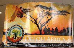 Delou Africa banner